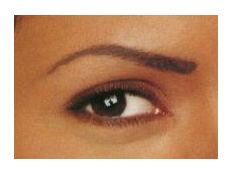 eyebrow with brow powder