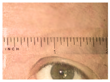 measure eyebrow length