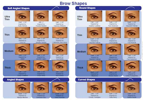 a poster of a sample of different eyebrow shapes