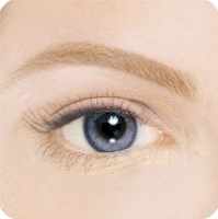 blonde brow with powder