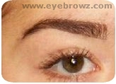 Define the edges of the brow